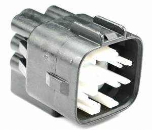 Connectors - 8 Cavities - Connector Experts - Normal Order - CE8013M