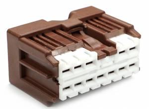 Connectors - 12 Cavities - Connector Experts - Normal Order - CET1257