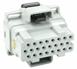 Connectors - 24 Cavities - Connector Experts - Normal Order - CET2417