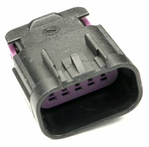 Connectors - 10 Cavities - Connector Experts - Normal Order - CET1010M