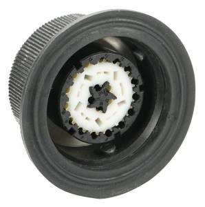 Connectors - 20 Cavities - Connector Experts - Normal Order - CET2041