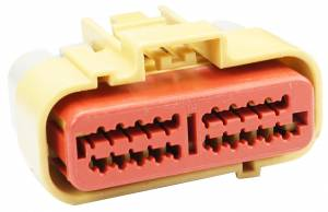 Connectors - 20 Cavities - Connector Experts - Normal Order - CET2053