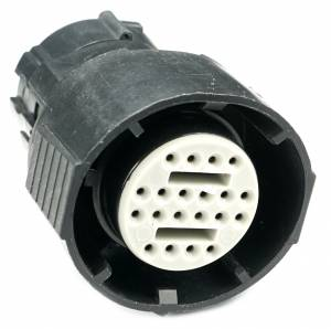 Connectors - 20 Cavities - Connector Experts - Normal Order - CET2054F