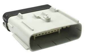 Connectors - 24 Cavities - Connector Experts - Special Order 100 - CET2459