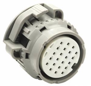 Connectors - 22 Cavities - Connector Experts - Special Order 100 - CET2201B